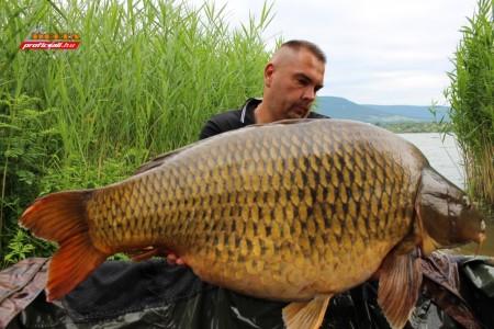 2. 26,60 kg másolata