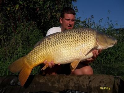 20,40 kg Natural
