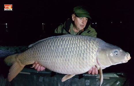 21 kg Glm Kovács József