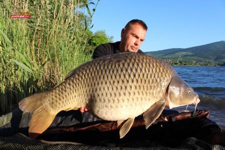 21 kg natural