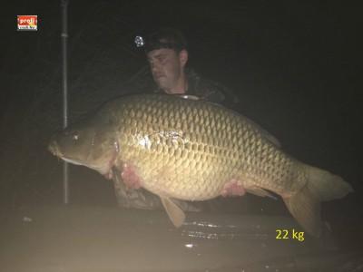 22 kg glm