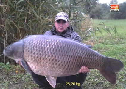 25,30 kg