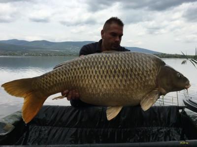 51. 24,50 kg natural