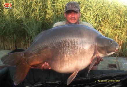 Ferinek 27kg