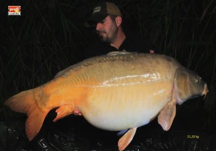 Harsány 21.2 kg