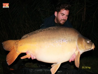 Harsány Dani 20.5 kg