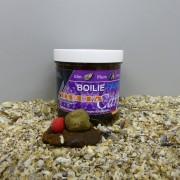 Glm Plum Liver - Kagyló, Szilva, Máj ízű horogpaszta