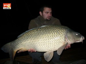 16 kg