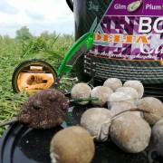 3 Kg Glm Plum Liver - Kagyló, Szilva, Máj ízű Bojli