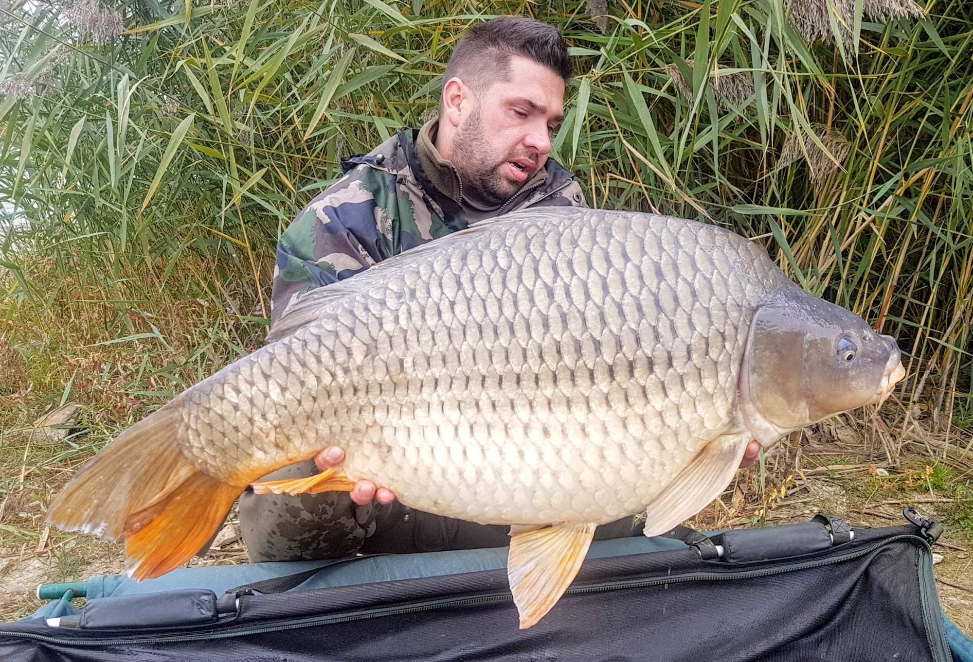 19,40 kg