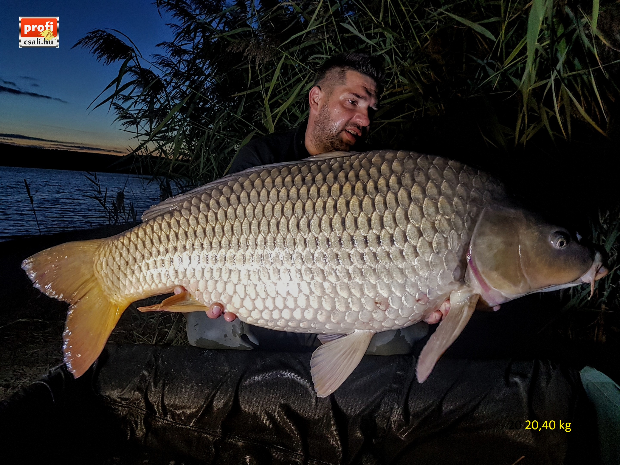 20,40 kg